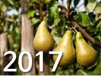 Meilleurs voeux pour 2017 !